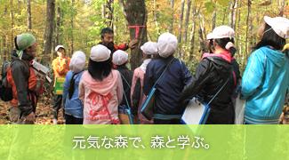 元気な森で、森と学ぶ。